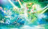 アクアパーク品川の「FLOWER AQUARIUM by NAKED」