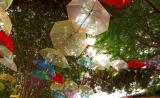 カラフルな200本もの傘が飾られるカフェ&コミュニティスペース「椿森コムナ」