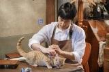 猫に翻ろうされる西島秀俊=『ブランケット・キャッツ』第1話より(C)NHK