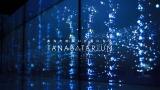 日本テレビの新プロジェクト『タナバタリウム』イメージ画像
