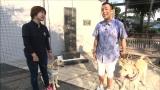 パピーウォーカー・高井さん一家と別れたその後は? まさはる君と松本君が訓練所にいるサンディを訪問する=『まさはる君が行く!ポチたまペット大集合』7月4日放送(C)BSジャパン