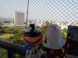 徳川家康をはじめ多くの城主が出生した浜松城・展望台から富士山の方角を見つめる家康くんと直虎ちゃん(C)ORICON NewS inc.