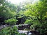 浜松城公園内の日本庭園 (C)ORICON NewS inc.