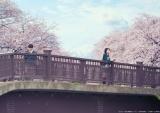 映画『君の膵臓をたべたい』メインカット (C)2017「君の膵臓をたべたい」製作委員会(C)住野よる/双葉社