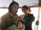 3日に放送される関西テレビ・フジテレビ系『憧れの仕事やってみました! 日本×海外の人生交換』場面カット