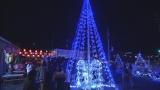 希望の光に輝くクリスマスツリー(C)NHK