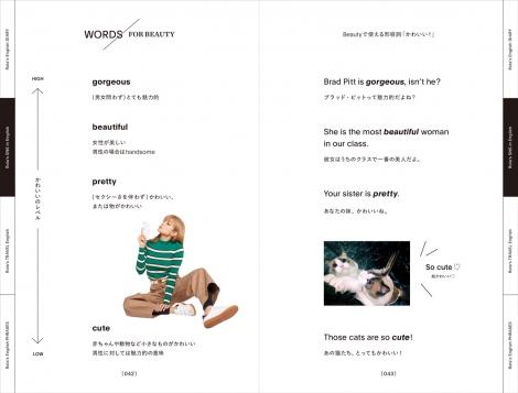 「かわいい」の使い分け方法/書籍『SPEAK ENGLISH WITH ME!』(税抜1300円/KADOKAWA)より