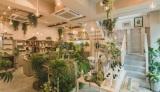 ボタニカルライフスタイル専門店「BOTANIST Tokyo」がオープン