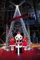 高さ約8メートルのツリーに番組出演者のグリーティングオーナメントが飾られている