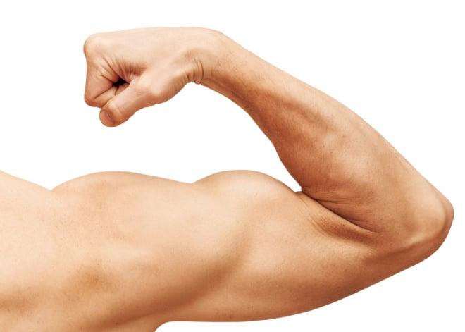 トレ 二の腕 筋