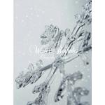 Winter Ballades