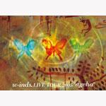 """w-inds. LIVE TOUR 2005""""ageha"""""""