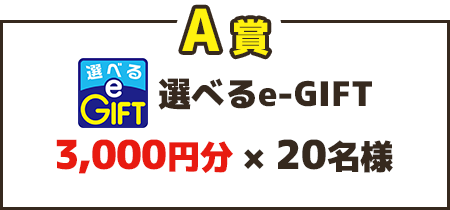 A賞 選べるe-GIFT 3,000円分×20名様