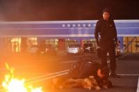 映画『DOG×POLICE 純白の絆』