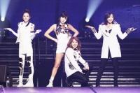 2NE1 『YG FAMILY CONCERT』(in さいたまスーパーアリーナ)