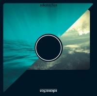 6thアルバム 『sakanaction』(通常盤)