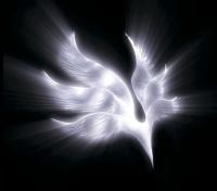 BUMP OF CHICKEN アルバム<br> 『orbital period』(2007年12月19日発売)