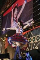 水樹奈々 全国ツアー『アニメロミックス presents NANA MIZUKI LIVE CIRCUS 2013 supported by JOYSOUND Calbee』西武ドーム公演の模様
