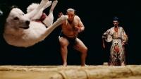 琴欧洲とお父さん犬が相撲対決