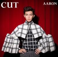 AARON(アーロン/炎亞綸)のコンセプトアルバム『CUT』(2014年7月23日発売)