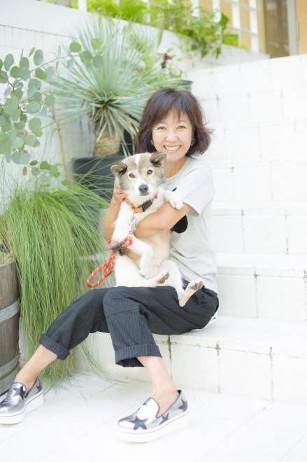 画像・写真   動物愛護活動を行う浅田美代子 4枚目   ORICON NEWS