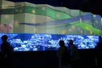 アクアパーク品川 FLOWER AQUARIUM by NAKED
