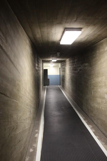 ウォルト・ディズニー・スタジオ内のアニメーションビルとオフィス・ビルをつなぐ地下通路。かつてビルを移動する際に雨天でもセル画などが濡れないように地下通路が作られた