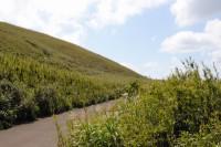 島の最北部にある標高200メートルほどの平坦な草原地帯「ジョウマン」