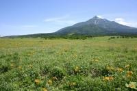 利尻島の景色