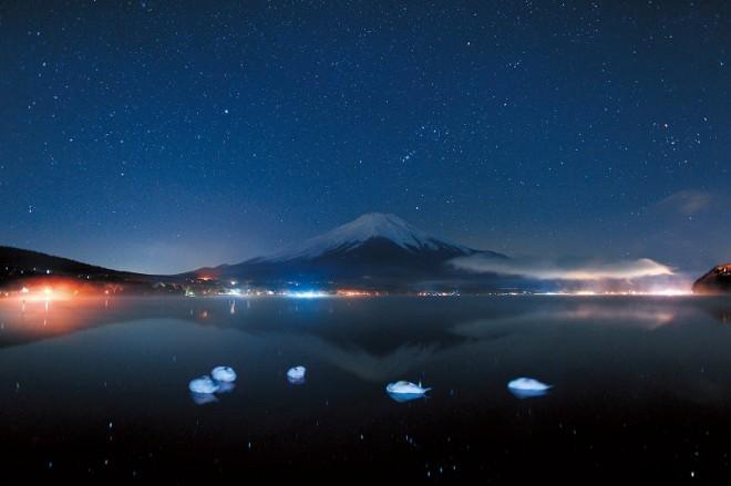 (c)Shingo Takei