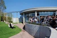 ジャイアントパンダをはじめとする希少動物の繁殖・育成を目的とした希少動物繁殖センター「PANDA LOVE」