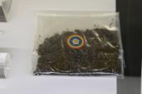 ギベオン隕石の粉