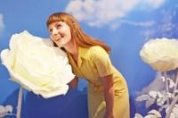 青空に映える白いバラが印象的なブース
