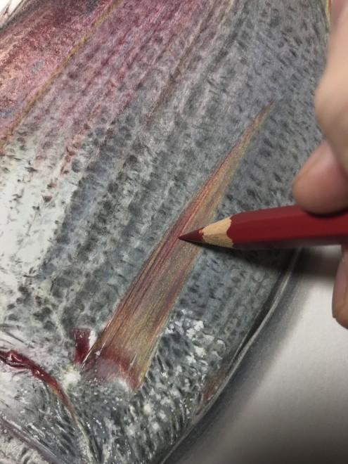 真鯛 制作過程