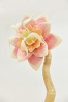 進化し続けるセロテープアート「セロフラワー オリジナル 〜未完の花〜」(高さ2.2m、重さ100Kg)
