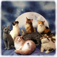 東京羊毛猫本社メンバー7名の作品集合カット