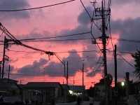 夕日×電柱・電線の最強コラボ