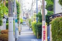 電柱が等間隔で並ぶ住宅街の小道