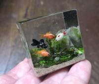 【小さな金魚水槽】制作・写真/sawamin