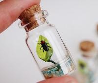 【蛍の小瓶】制作・写真/sawamin