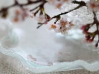 【桜とスイーツ】制作:Shibazukeparipari