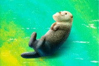 シャクレルラッコ・2018年05月『パンダの穴 シャクレルプラネット4』/タカラトミーアーツ (C)Panda's ana
