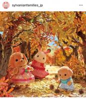 紅葉を見に来たショコラウサギちゃんたち。たくさんの色に染まっていてとってもきれいですね♪