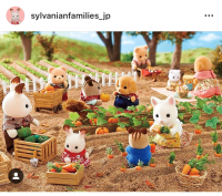 みんなで野菜の収穫のお手伝い! 頑張ったあとのごほうびは野菜たっぷりのおいしいごはんです♪