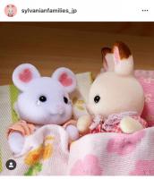 今日はようちえんのおとまり会!「こわいゆめを見ちゃってねむれないよう…」「だいじょうぶ!私がついてるよ!」ショコラウサギの赤ちゃんはちょっぴりお姉さん気分です♪