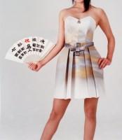 1996年 天才棋士羽生氏7冠達成「将棋ブラ」