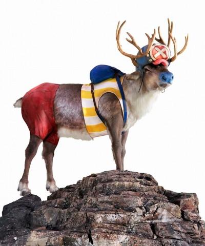 「Indeed」新CMで『ONE PIECE』のチョッパーになりきった鹿