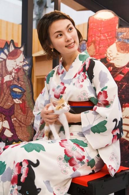 『江戸ねこ茶屋』では保護猫と触れ合うことができる