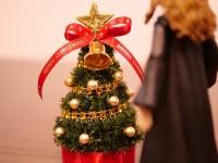 クリスマスが今年もやってくる-まぁこれはこれでクリスマスをハーマイオニーと過ごせるから良しと考えるロン(5/7)