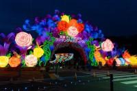 『チャイナランタンフェスティバル』で展示されている「バラの約束」
